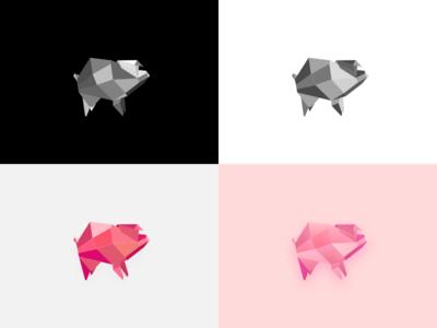 Geometric Pig Exploration