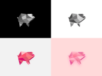 Geometric Pig Exploration