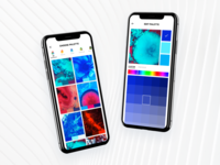 Color Palette Picker Exploration