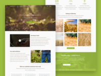 Growing Nutrient Landing Page for PerfectGrower