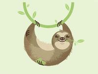 The Circle of Sloth