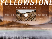 Yellowstone comp