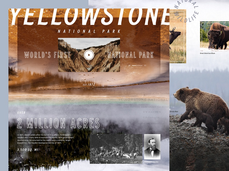 World's First National Park web design ux ui yellowstone national park design