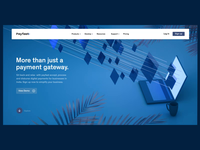 Payfast- Payment Gateway website concepts
