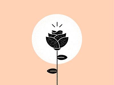 Rose Graphic blog vector illustration