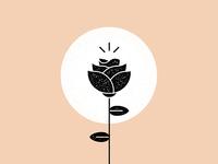 Rose Graphic