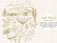 MF Mushroom Illustrations