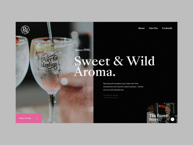 Puerto De Indias Gin Homepage Concept 2