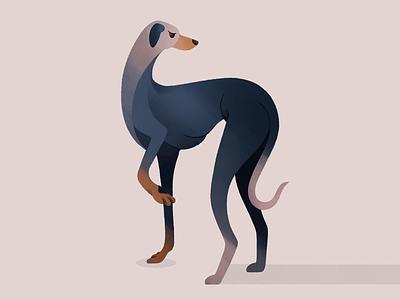 Greyhound procreate brushes character procreate flat cartoon pastel gradient palette drawing animal portrait portrait animal art animals doggo dogs dog greyhound