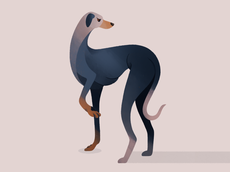 Greyhound procreate brushes character procreate flat cartoon pastel gradient palette drawing animal portrait portrait animal art animals doggo dogs dog greyhound