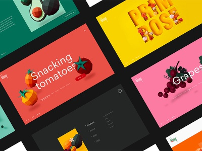 Delassus user interface design user interface stretched type motion colorful color design trends design trend design uiux ui design ui