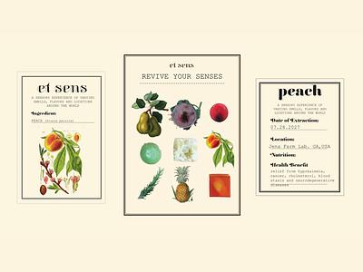 Et Sens Identity identity branding graphic design