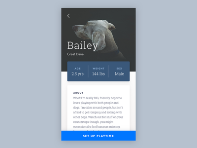 Daily UI #006 monochromatic blue petsitter animal puppy dog pet daily ui challenge