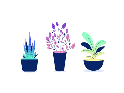 Plants leafy house plant illustration potted gradient leaves