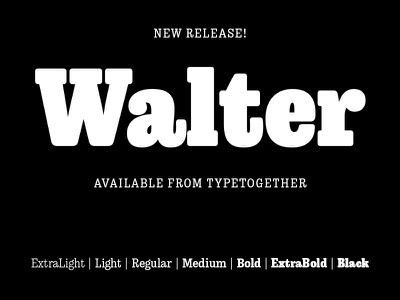 Walter release graphic design design type family typeface font typography type design