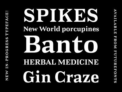 Banto design graphic design wedge serif font type typography type design