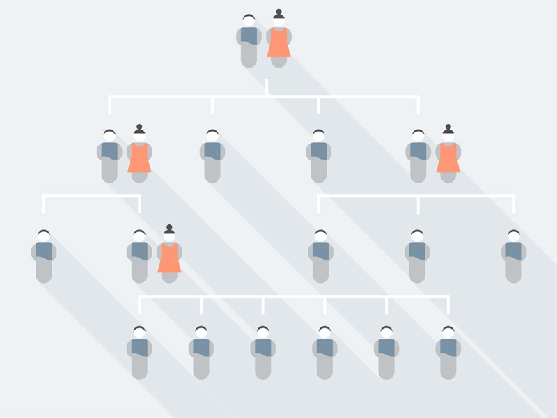 Gender Selection minimal simplicity family tree data visualization flat design flat illustration vector icons heritage gender