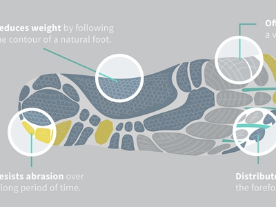 Qualities of a Minimalistic Running Shoe spotlight running shoe anatomy vector illustrator foot detail textile footwear illustration