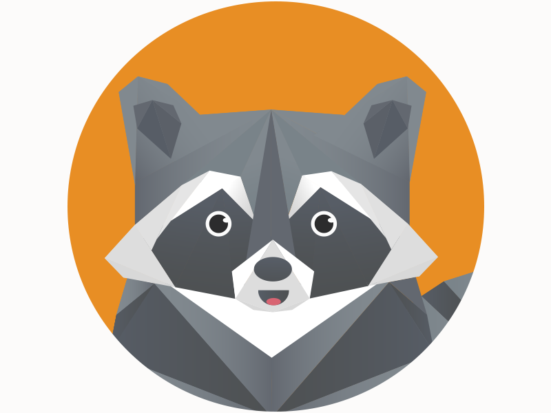 Polygonal raccoon animal polygonal raccoon