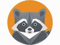 Polygonal raccoon