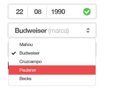 Asistente de cervezas cerveza online forms inputs