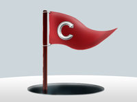 Flag Ftw