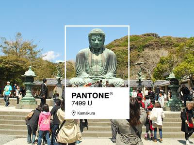 Pantone 7499 U Kamakura