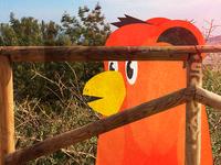 Birdbear