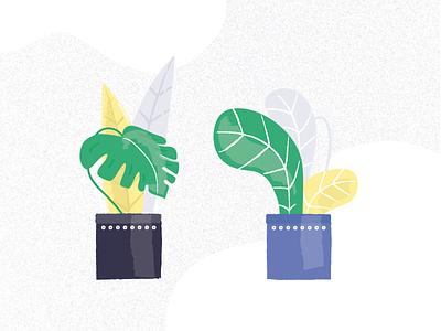 Plants potted plant vegetation plant illustration