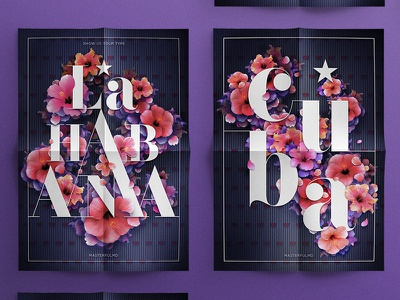 La Habana  Cuba x Show Us Your Type digital illustration poster type