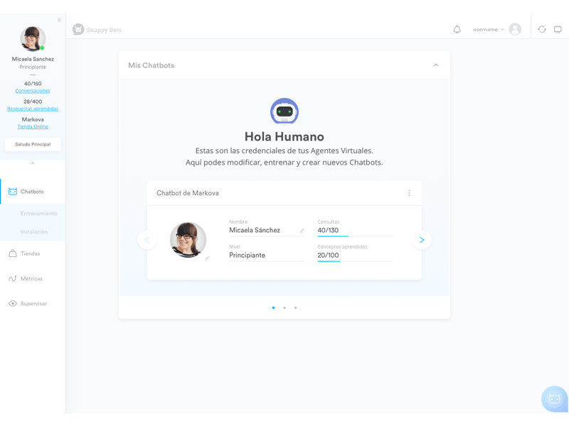 Chatbot Platform Dashboard