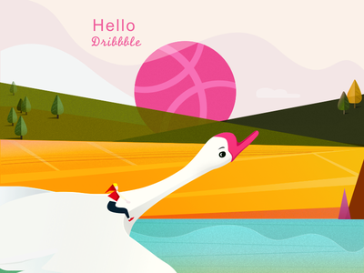 HELLO  Drribbble vector rode geese design dribbble sketch