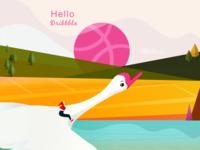 HELLO  Drribbble