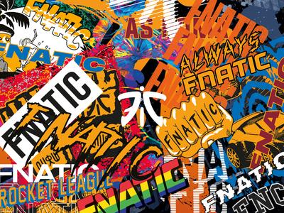 Fnatic Special Edition 1