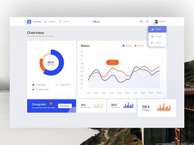 Nefto Dashboard Exploration layout visual admin uidesign interface minimal status admin panel user management task statistics graph dashboar