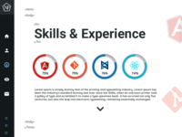 Skills  And Experiencepage