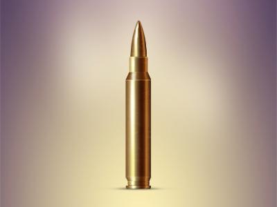 400 300 bullet