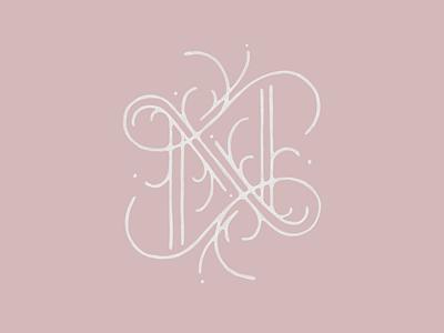 part_A drop cap n letter type typography lettering