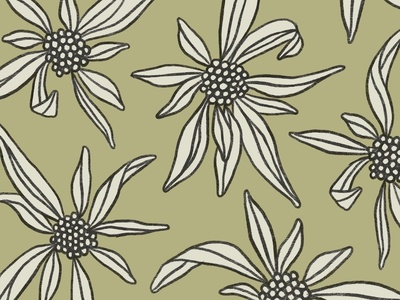 Pattern Preview illustration floral pattern design pattern