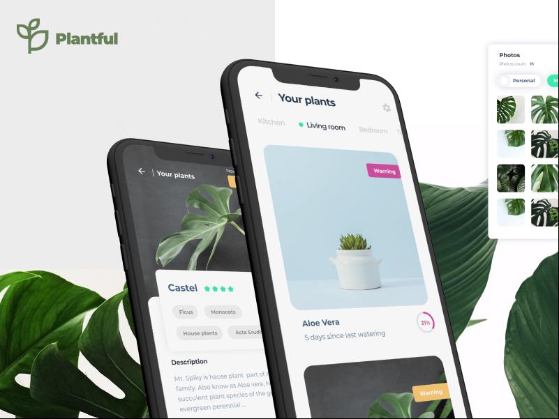 Plantfull   App design creative clean app colorful design colorful app bold modern interace minimal plant app