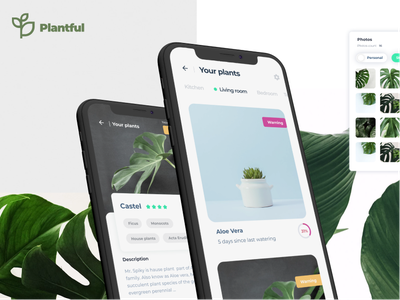 Plantfull | App design creative clean app colorful design colorful app bold modern interace minimal plant app