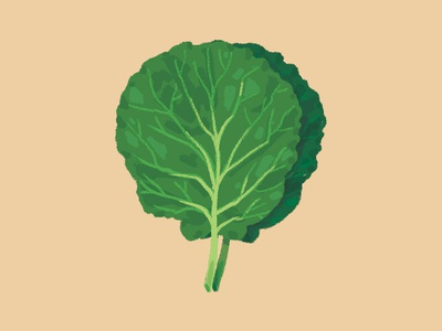 Lettuce nutritionist nutritional alface lettuce nutrition digital painting digital paint food diet comida illustration