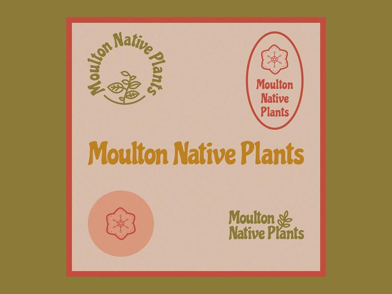 Moulton Native Plants branding design logo illustration typography art direction digital design graphic design