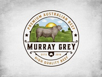 Murray Grey