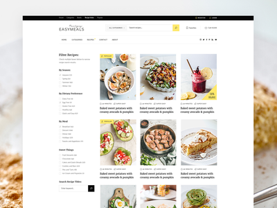 EasyMeals - Food Blog WordPress Theme filter wordpress theme design ux ui modern community forum ingredients bloggers foodblog blog food recipes