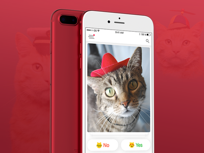 Tinder for Cats dating cat iphone red iphone mobile app ios dislike like emoji cards tinder