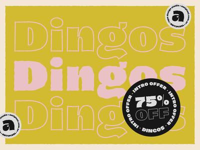 Dingos 75%OFF