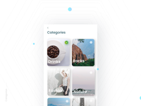 Categories- Daily UI:: #099