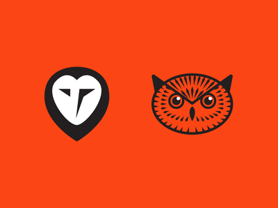Owls icon bird owl vector illustration