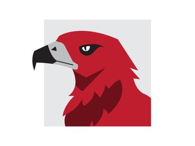 Keen-eyed Hawk